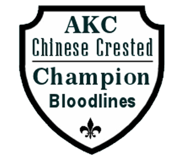 AKC Chinese Crested Champion Bloodlines